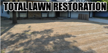 How to guide for a total law restoration.